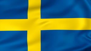 SWEDEN DAY / 29.12.2020